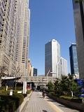 都庁写真 (1)